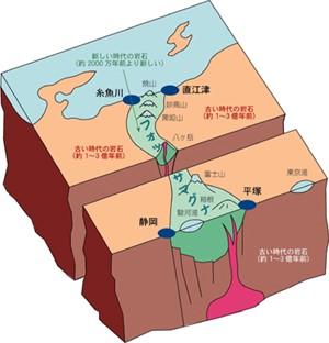 zinruiseizon-kagaku5
