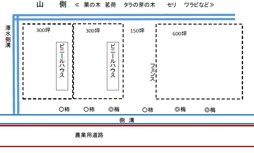 tamura-image5